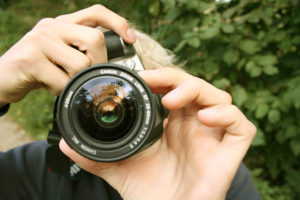 Choosing free stock images for blogs & websites